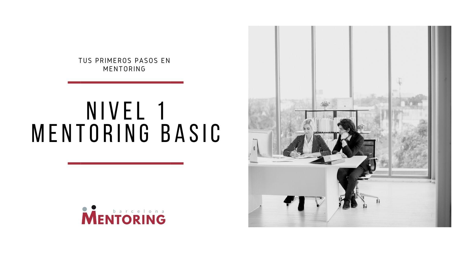 Iniciación al mentoring